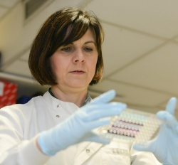 This is Dr Tatjana Crnogorac-Jurcevic, Barts Cancer Institute, Queen Mary...