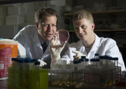 Dr. Brad Berges and undergraduate Jacob Hatch are researching ways...