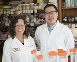 Lori Holtz, MD, (left) led a study with first author Efrem Lim, PhD,...