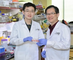 First author of the study, postdoctoral fellow Dr Sun Jichao (left), with...