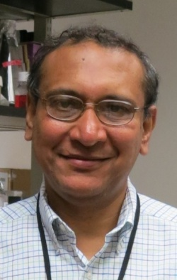 Anindya Dutta, MD, PhD, of the University of Virginia School of Medicine and...