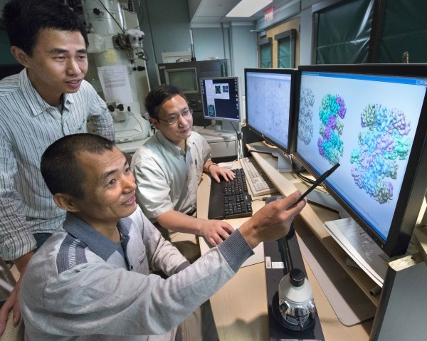 Collaborating scientists and study coauthors Zuanning Yuan, a graduate student...