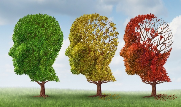 A new study sheds light on the early stages of Alzheimers disease.