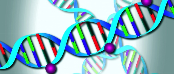 Photo: Chaos in cancer cells: Mysterious gene transcripts after therapy