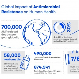 Global impact of antimicrobial resistance on human health