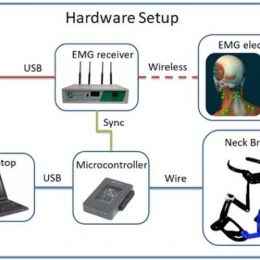 System overview: the head angles of the participant are measured by the robotic...