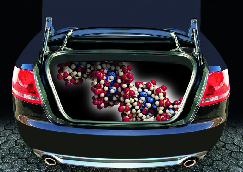 Car with symbolised bubbles in the boot