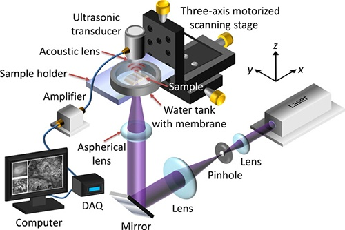 The graphic shows elements of the photoacoustic microscopy system for surgical...