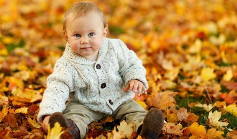 baby on autumn leaves