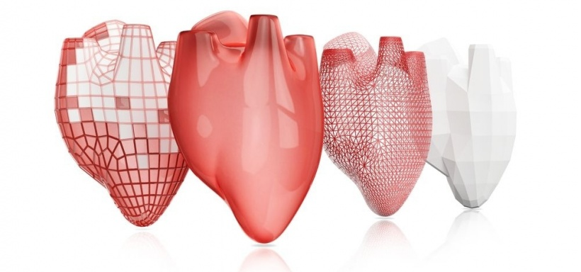 Spain takes medical 3-D print to heart
