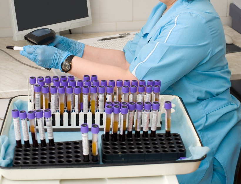 nurse feeds data of test tubes with blood for analysis into the database