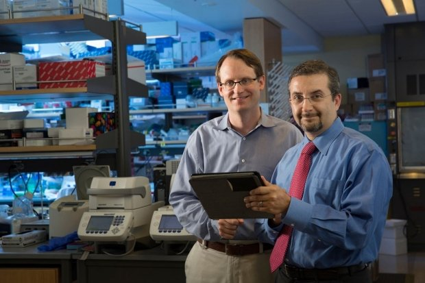 Maximilian Diehn (left) and Ash Alizadeh led a study that found a blood test...