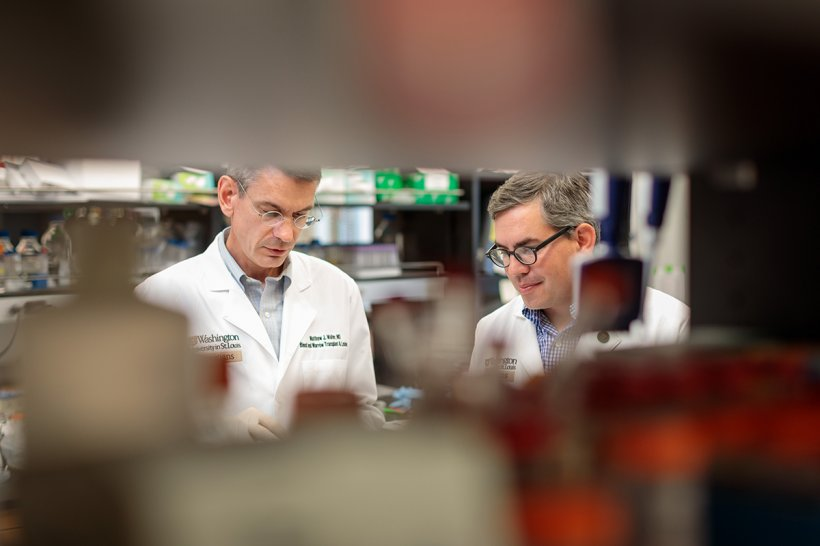 Matthew Walter, MD, left, and Eric Duncavage, MD, work in the lab. They and...
