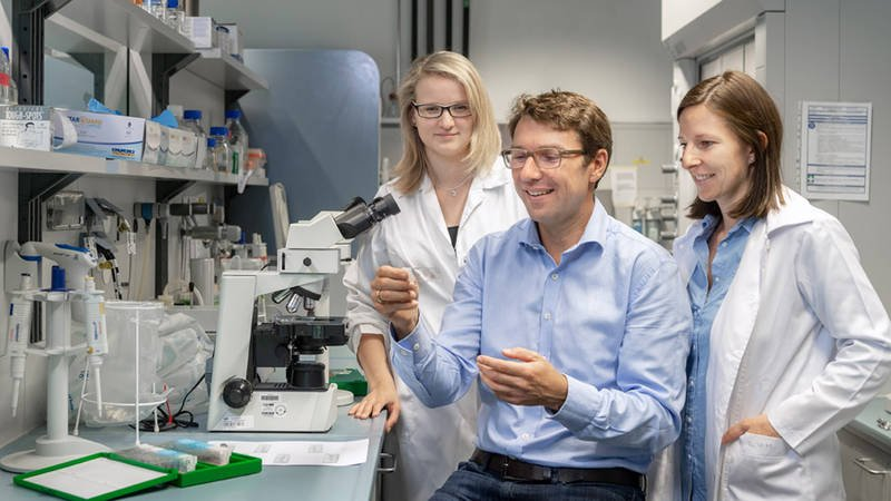 Prof. Dirk Haller and his team found out that it is not cell stress alone that...
