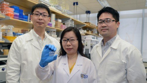 A multidisciplinary team led by Assistant Professor Shao Huilin (centre) at...