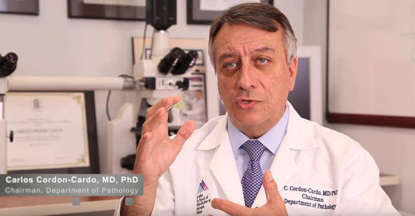 Carlos Cordon-Cardo, MD, PhD, Chair of the Department of Pathology at the Mount...