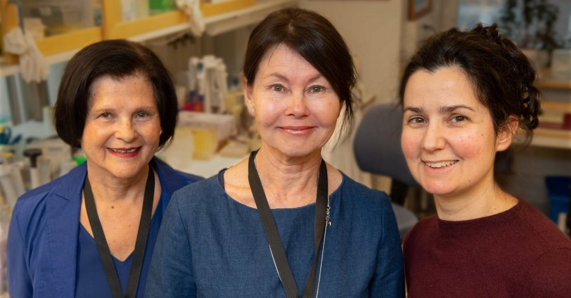 Karolinska Institutet researchers Pauline Harper (from left), Eliane Sardh and...