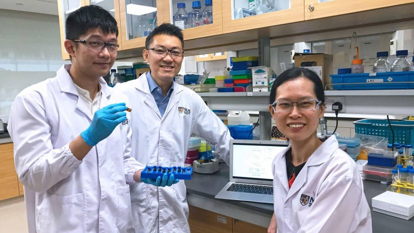 Mr Toh Yi Long (from left), Associate Professor Alexandre Chan and Assistant...