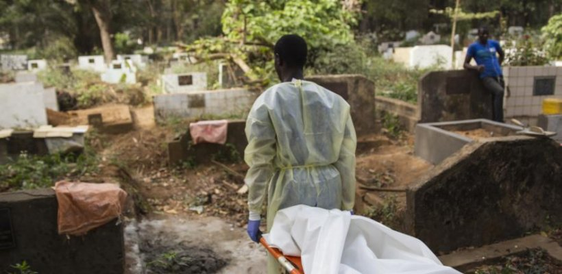 Half of Ebola outbreaks have gone undetected since the virus was discovered in...