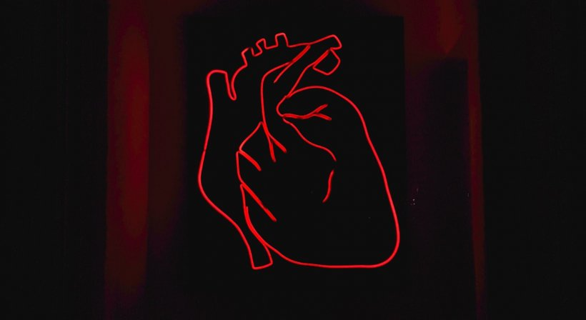 heart shaped red neon sign