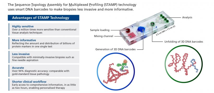 Schematic of the new STAMP technology