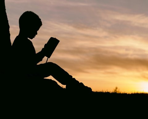 silhouette of child reading a book sitting against a tree