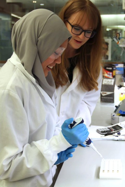 two female scientists in a medical laboratory