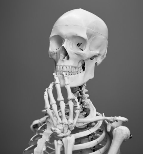 human skeleton posed to hold its chin
