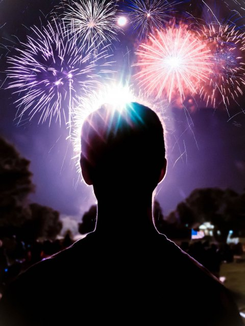 silhouette of person looking at fireworks