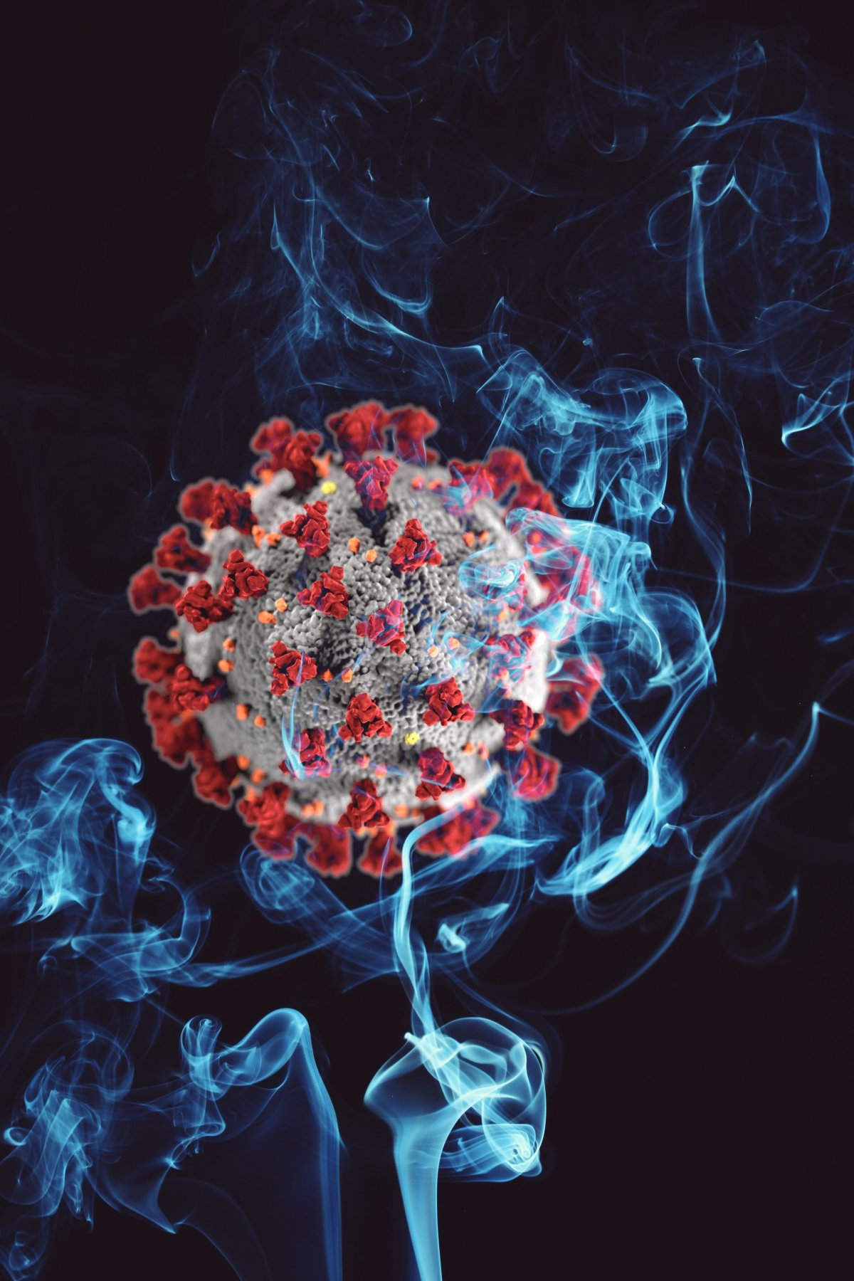 Up in smoke: Smoking increases SARS-CoV-2 receptors in the lung