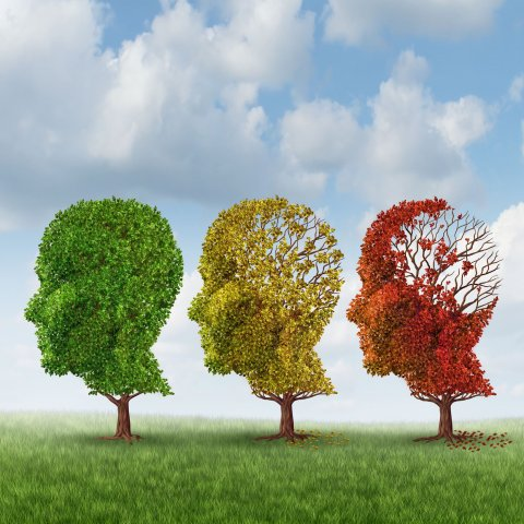 head-shaped trees as a symbol for advancing neurodegeneration
