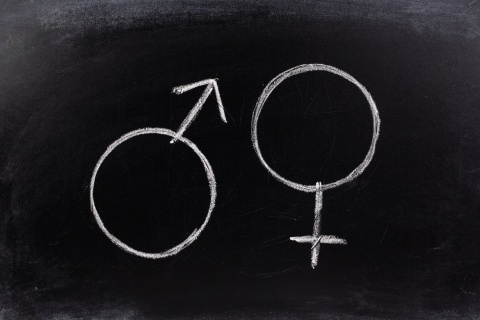 Gender symbols or signs for the male and female sex drawn on a blackboard