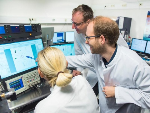 Dr. Janine Gotot, Prof. Christian Kurts and Christoph Heuser (from left) analyzing the immunological data