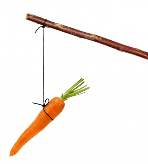 Stick with carrot on string