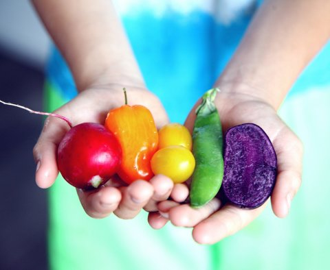 person holding colorful fruits and vegetables