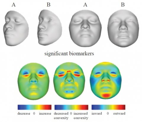 facial reconstruction using algorithms